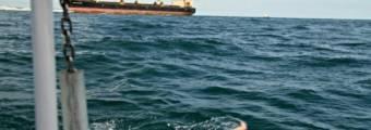 5 grandi differenze tra acque libere e piscina